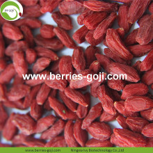 Hot Sale Super Dried Fruit Improve Eyesight Wolfberries