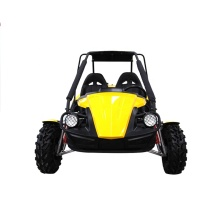 250 2 seats buggy gasoline adult go kart