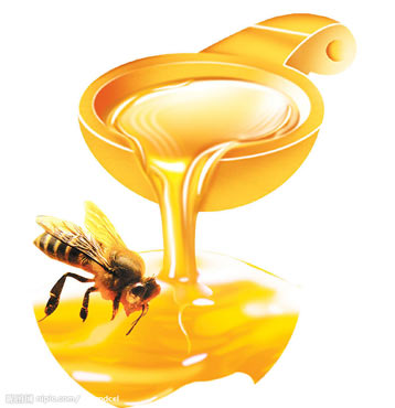 100% raw and natural Liden Honey bulk sale