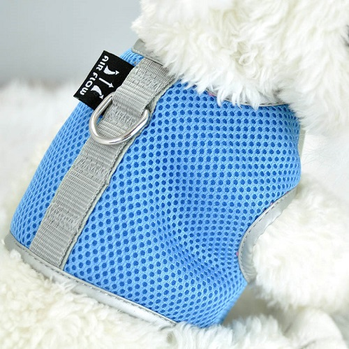 Blue Airflow Mesh Harness with Velcro back