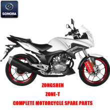 Zongshen Zone-T Complete Engine Body Kit Spare Parts Original Spare Parts