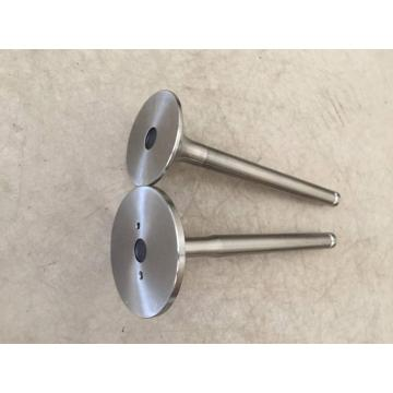 Marine Diesel Engine Parts 6HAL-DTN Engine Valve