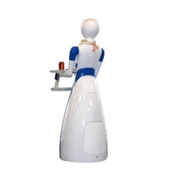 Overseas After-sales Service Provided Waiter Robot