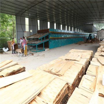 Face Plywood Veneer Dryer Machine