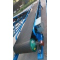Activated Roller Belt Conveyor/Roller Diverter