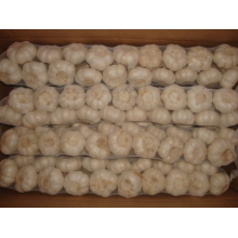 Best Quality Pure White Garlic Braids