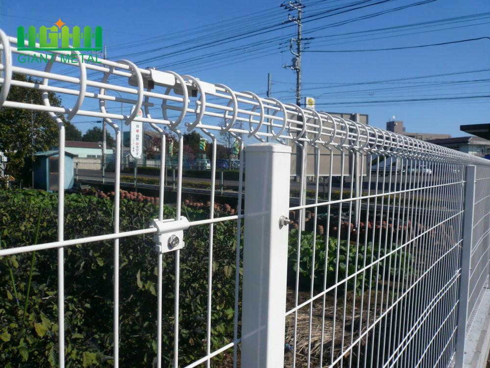 BRC roll top  mesh fence