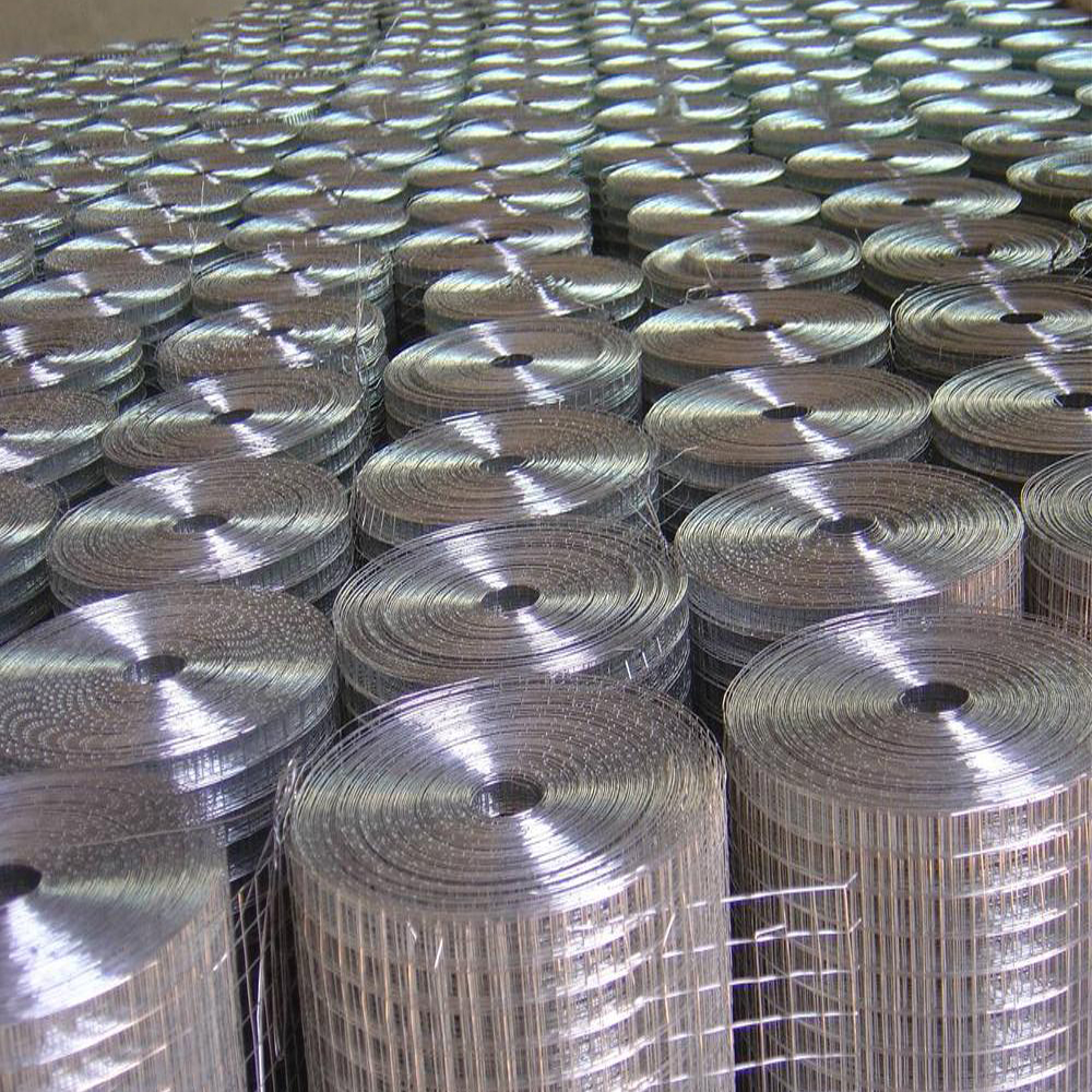 Galvanized Welded Wire Mesh Roll China Manufacturer