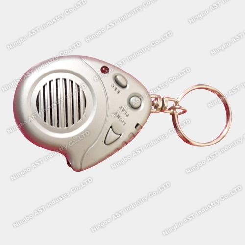 Key Chain, Voice Recorder Keychain, Recording Keychain
