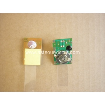 LED Battery Flashing light,flashing single led lights battery,LED lights