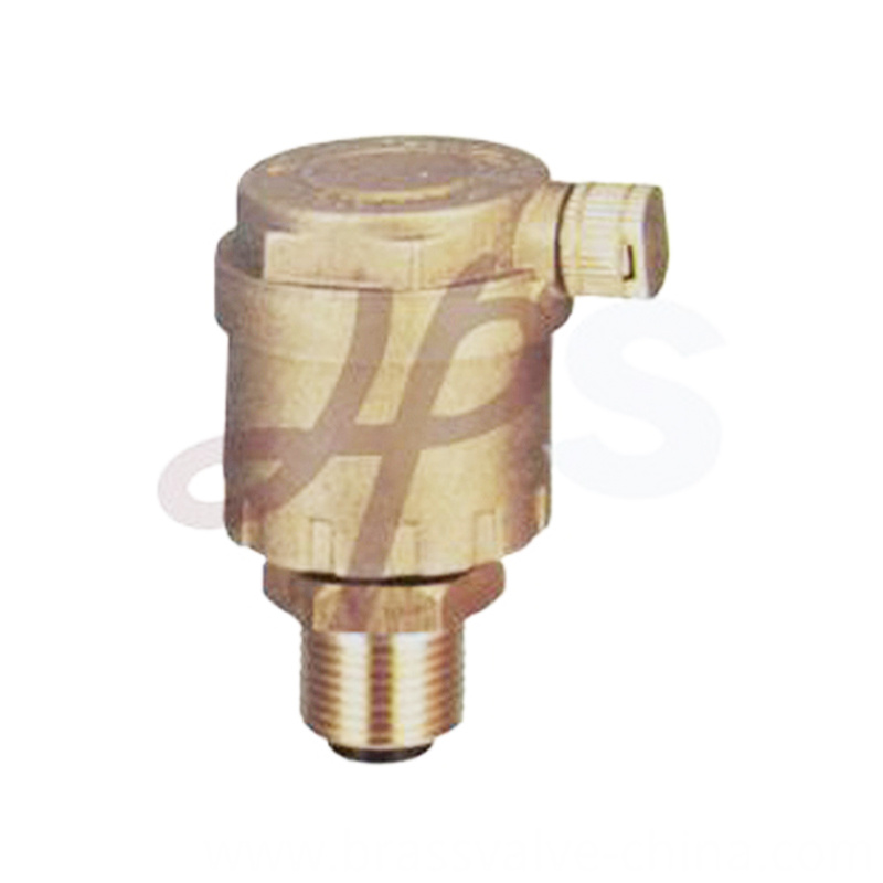 Brass Exhaust Valves Hvr14