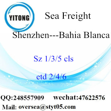 Shenzhen Port LCL Consolidation To Bahia Blanca