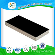 Film Faced Plywood  in the GCC countries
