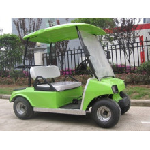 two seater 150cc gasoline golf cart for tourists