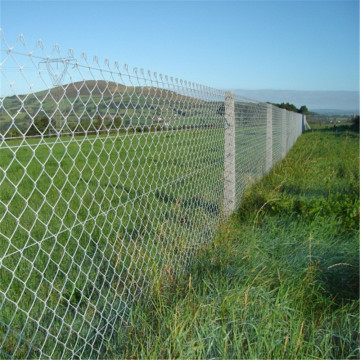 5X5cm Opening Chain Mesh Fence