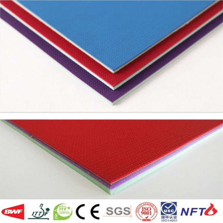 Table Tennis Court Mat 5 2