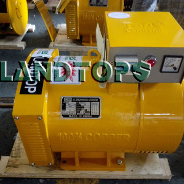 Customized for 3 Phase AC Generator 400V STC-20KW Three Phase AC Generator Alternator supply to United States Factory