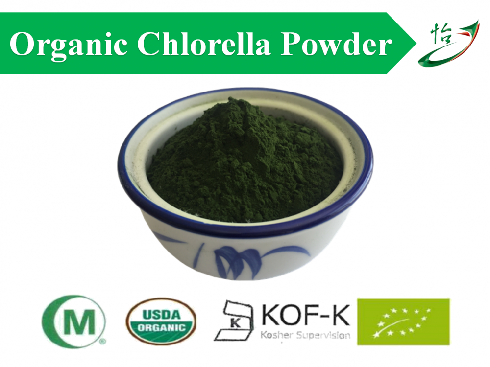 China Organic Chlorella Powder Pure Organic Chlorella