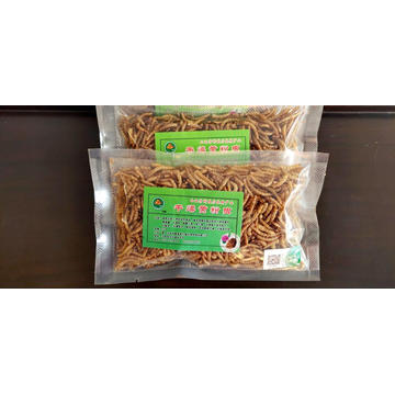 Superior quality yellow dried mealworm