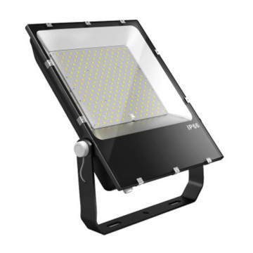 100W Activated Flood Light