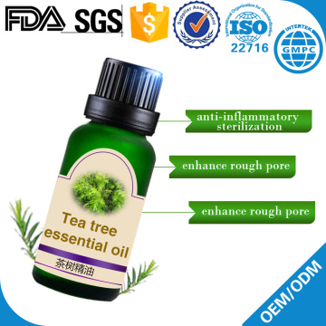 tea tree oil essential oil and dogs cats