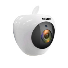 Mini Fisheye HD Wireless CCTV Camera with Monitor