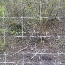 Cattle Fence-Hot Dipped Galvanized Field Fence
