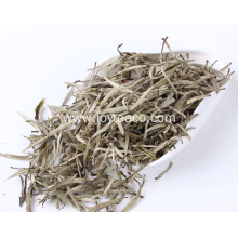 Health Benefits Silver Needle Tea White Tea