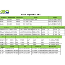 Brazil Importing Customs Data