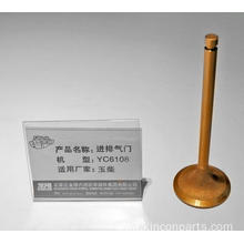 Engine Valves  YC6108