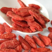 Wholesale Dried Wild Goji Berry Ningxia bulk