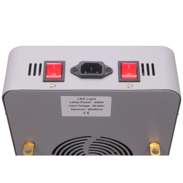 Collagen Full Body 660nm 850nm Panel for Health Beauty Care 600W led Therapy light for Anti-Aging Pain Relief