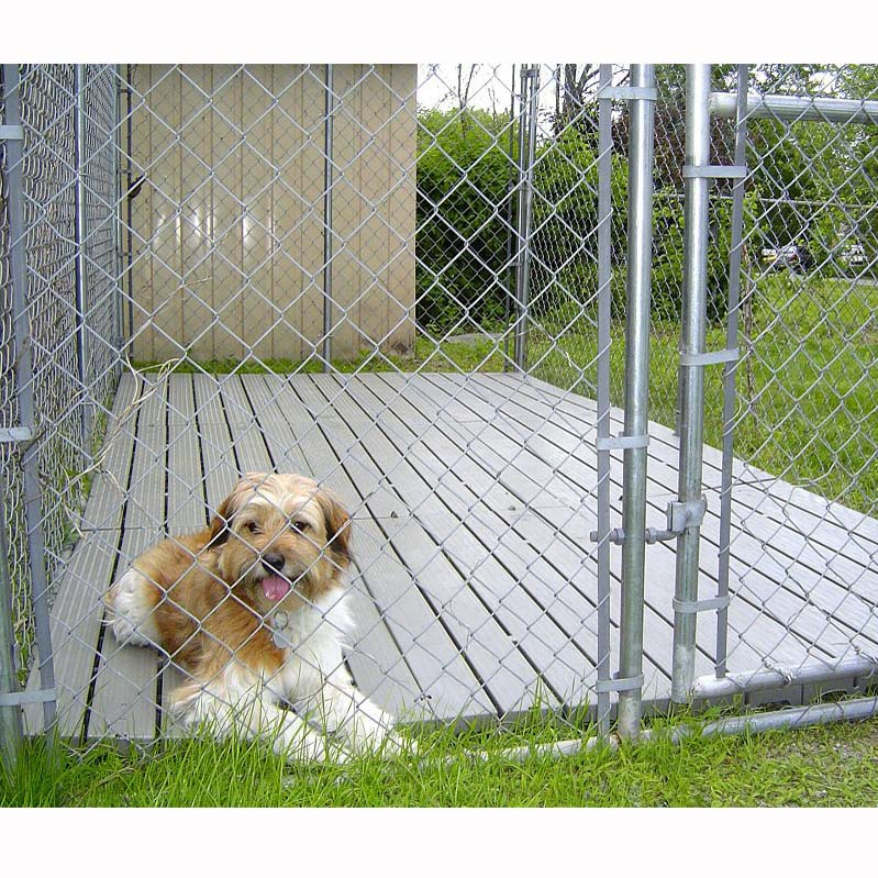 coverd dog-kennel