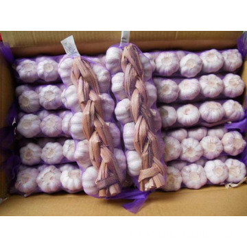 Different Sizes Different Weights Garlic Braids In Carton