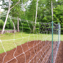 OEM for Plant Support Netting Plastic Square Mesh Trellis Netting supply to Indonesia Manufacturers