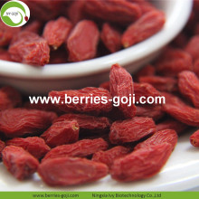 Low Sugar Natural Nutrition Sweet Common Goji Berries