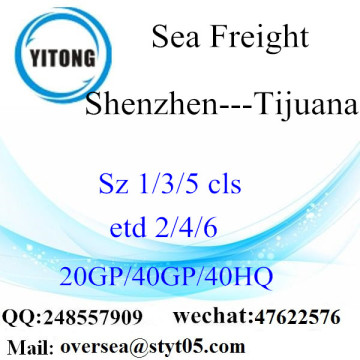 Shenzhen Port Sea Freight Shipping To Tijuana