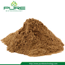 Angelica root extract 0.1%-0.3% Ferulic acid HPLC