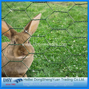 Hexagonal Wire Mesh for Poultry Fence