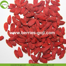 Factory Wholesale Sun Dried Cosmetic Diet Wolfberry