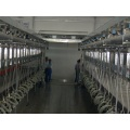 Quick-release type milking parlor