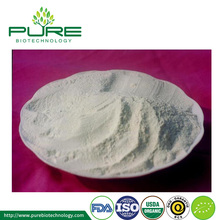 Organic Garlic Powder Extract