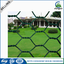 Best Quality for China Hexagonal Wire Mesh, Hexagonal Wire Netting, Crimped Wire Mesh Manufacturer Hexagonal Chicken Wire Mesh supply to Slovakia (Slovak Republic) Manufacturer