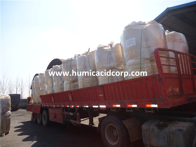 Organic humic acid powder 75% for oil drilliing