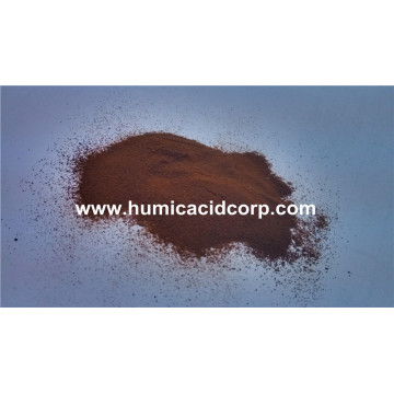 Factory source for Fulvic Acid Powder High quality bio fulvic acid export to Belgium Factory