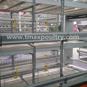 Broiler cage system for Poultry