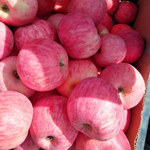 Piedmont brand rich selenium red Fuji apple
