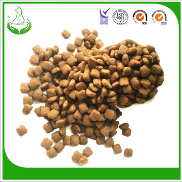 premium production dry pet food industry
