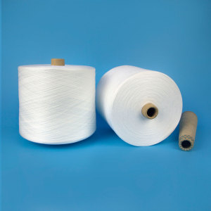 High definition Cheap Price for Polyester Core Spun Yarn 100 Polyester Virgin and Bright Yarn 30/2 Thread supply to Turkmenistan Supplier
