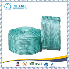 China for PP Danline Twist Rope Twist type PP Danline Rope 3 Strand Polypropylene Rope export to Botswana Factory